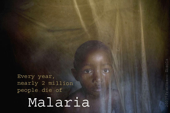 malaria, killer, travel, prevention